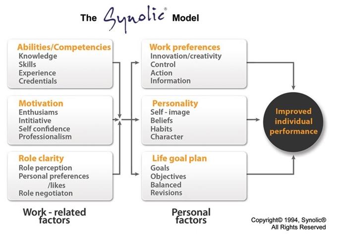 Synolci Model